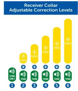 PetSafe Wireless Fence Adjustable Correction