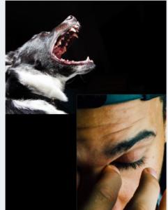 barking dog and man